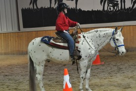 Equestrian Certified Training School @ BraveHearts at The Bergmann Centre | Country Club Hills | Illinois | United States